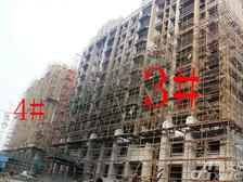 星洲国际城星洲国际城3#4#楼11月项目进度