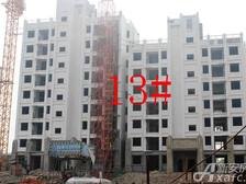 星洲国际城星洲国际城13#楼11月项目进度