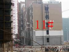 星洲国际城星洲国际城11#楼11月项目进度